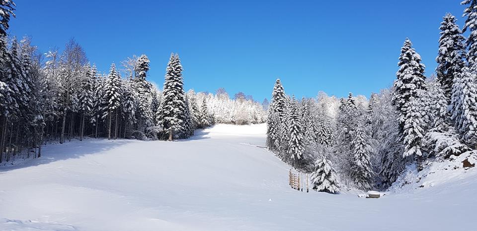 """Ski centar """"Kolašin 1600"""" otvara vrata prvim gostima"""