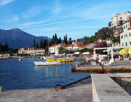 Staze Boke: Rose–ruža Boke Kotorske (epizoda 3)