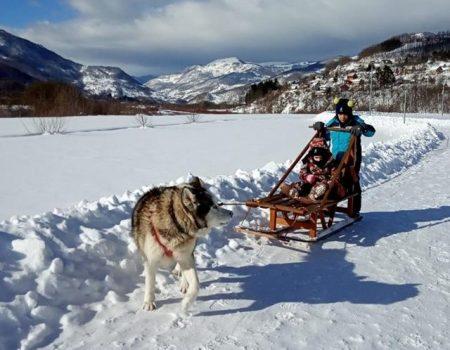 Zabava na snijegu u Mojkovcu: Haski vuče sanke