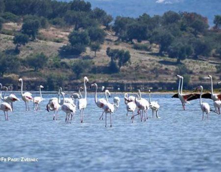 Prizor zbog kojeg sve više turista ide u Albaniju