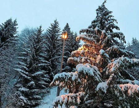 Škola skijanja od 15.januara na Lokvama