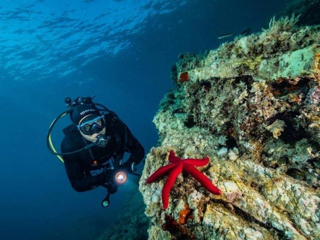 A German journalist writes about the underwater world of Montenegro: Diving and caves are your chance!