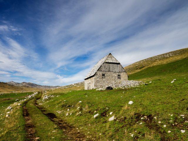 Ljekovitost crnogorske prirode: Jedna godina na katunu-dvije godine života