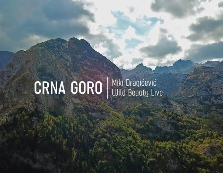 Prva nagrada za spot Crna Goro