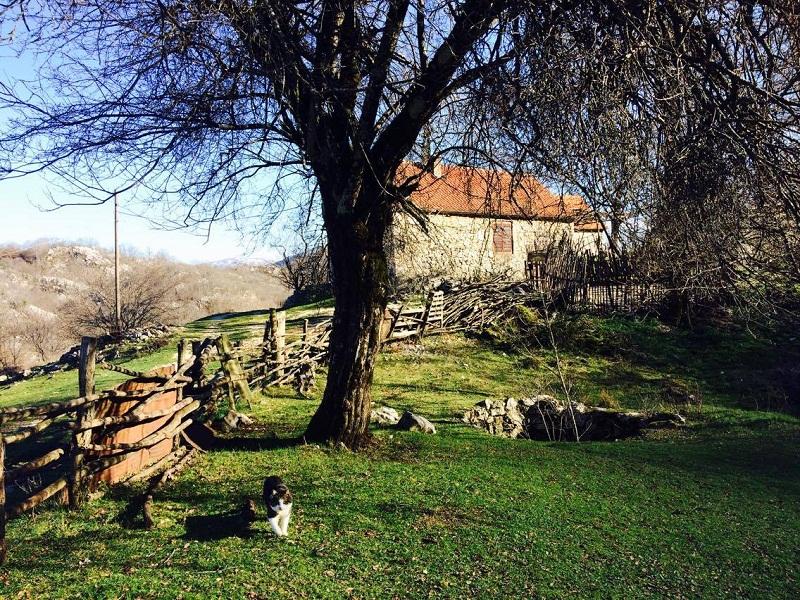 Subotnja šetnja do zaboravljenog sela Međeđe