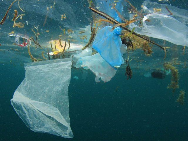 Sat za planetu: Skini se sa plastike, navuci se na prirodu!