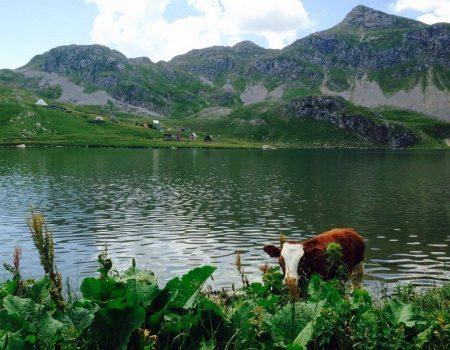 Kapetanovo jezero: Nebu pod oblake, u srcu planine…
