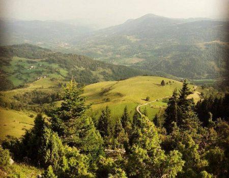 Čarobnom predjelu dugujemo više: Vranešku dolinu turistički valorizovati