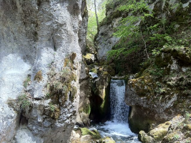 Secret of Petnjica: Hidden treasure is still waiting to be found!