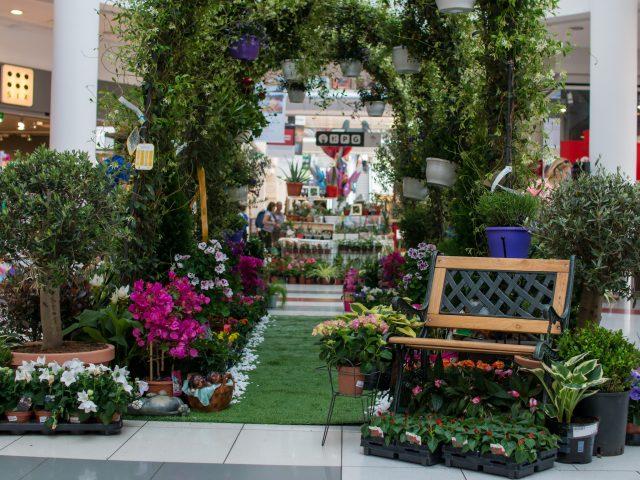 Miris proljeća: Sajam cvijeća i ukrasnog bilja za vikend u Delti