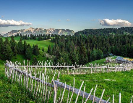 Mokra Gora brendirana kao Ljepotica Balkana