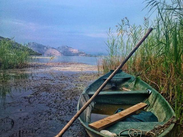 Na Skadarskom jezeru 38% više posjetilaca