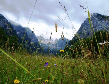 Pohod Hamdovom stazom okupio stotine planinara i ljubitelja prirode