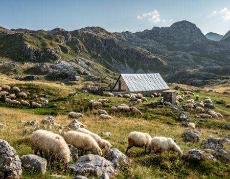 Kučke planine: Planinski kosmos duž međe Crne Gore i Albanije