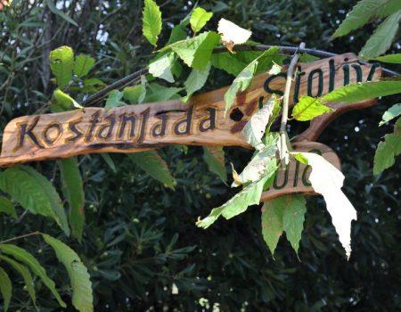 Jesen u Boki: Ne propustite Kostanijadu u Stolivu!