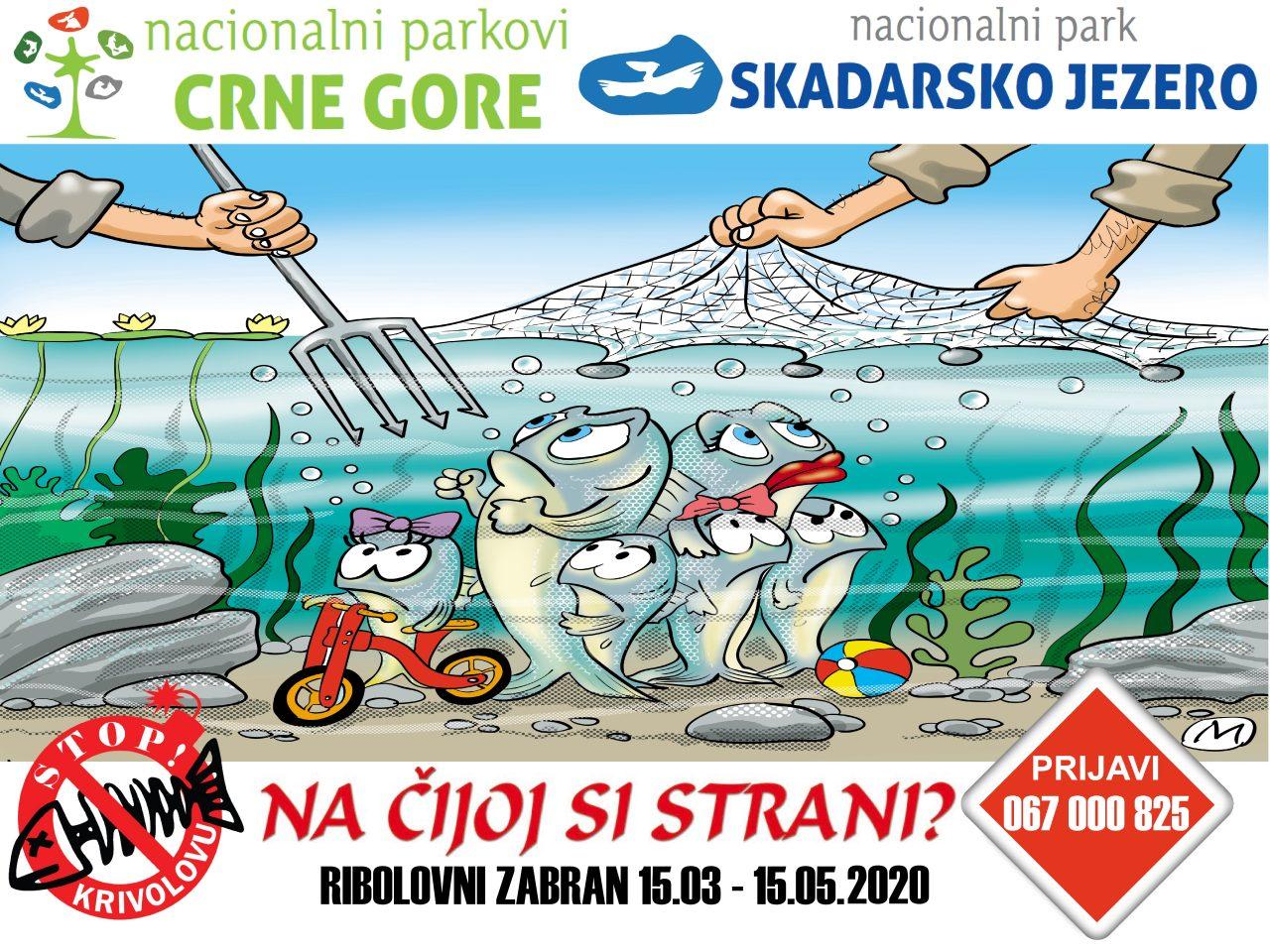 Ribolovni zabran na Skadarskom jezeru od 15. marta do 15. maja