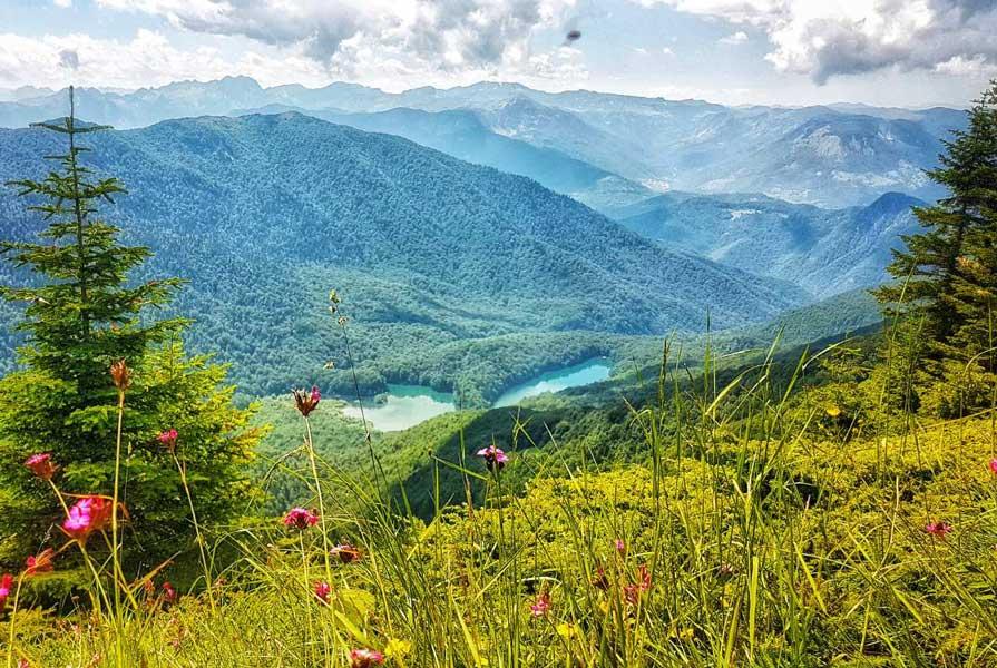Uređene staze i vidikovci u NP Biogradska gora