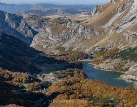 """Naše čudo: Još jedna priča o crnogorskom """"surovom grubijanu"""""""