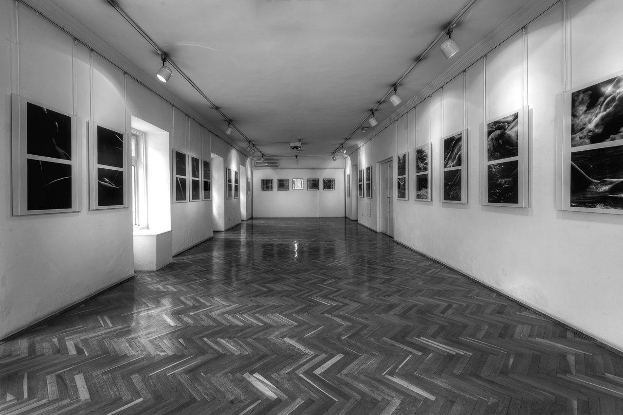 JU Muzej i galerija Tivat danas otvara vrata