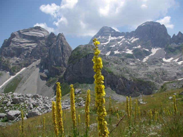 Besplatan ulaz u sve nacionalne parkove povodom Evropskog dana parkova