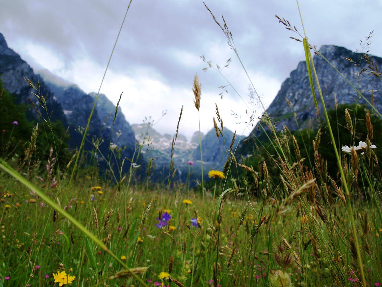 Otvaramo sezonu na Prokletijama uz 14. planinarski pohod Zijovom stazom