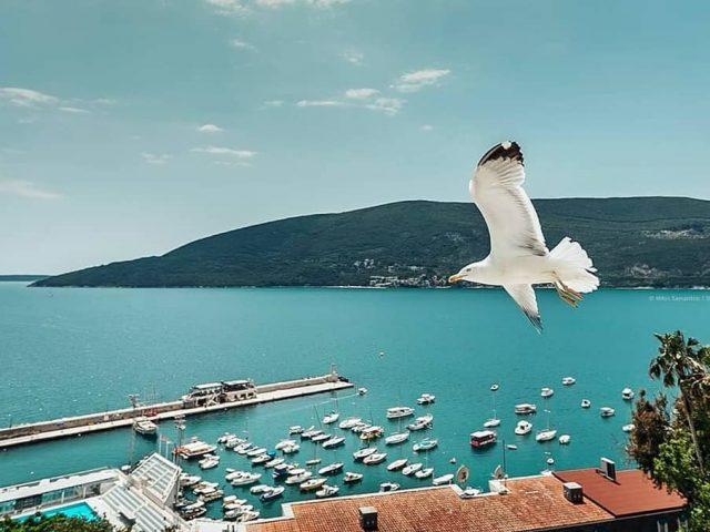 #HercegNoviTeZove: Veliko interesovanje za besplatno ljetovanje u gradu od skalina