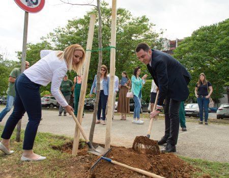 Moje drvo za Planetu: Coca-Cola sistem Podgorici donirao 19 stabala