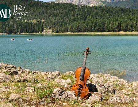 Wild beauty Art od 31. jula do 22. avgusta na Luštici i Žabljaku