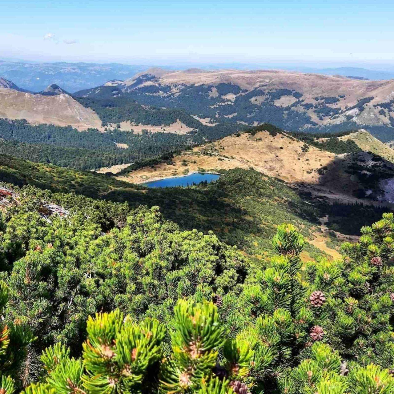 PSCG: Preporuke planinarima tokom ljetnje sezone