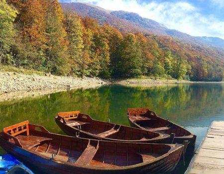 Biogradska gora uskoro na UNESCO listi