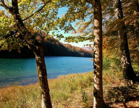 Ponovo otvoren NP Biogradska gora