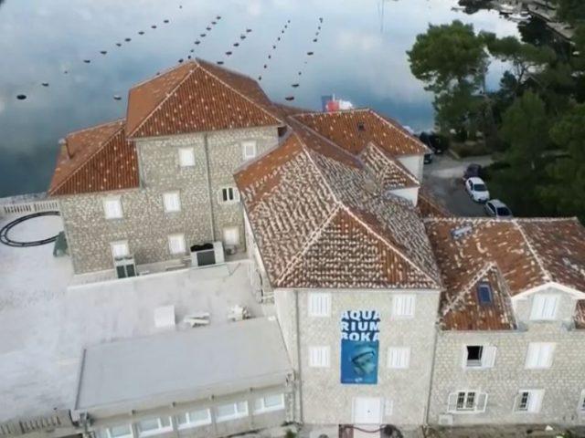 Zavirite u prvi crnogorski Akvarijum