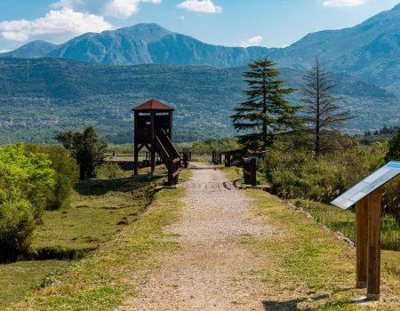 Zatvorena Tivatska solila zbog loše epidemiološke situacije