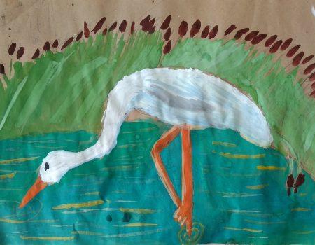 Djeca inspirisana ljepotama prirode Skadarskog jezera