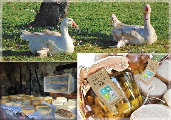 Bogatstvo prirode i istorije: Upoznajte sela Orjena