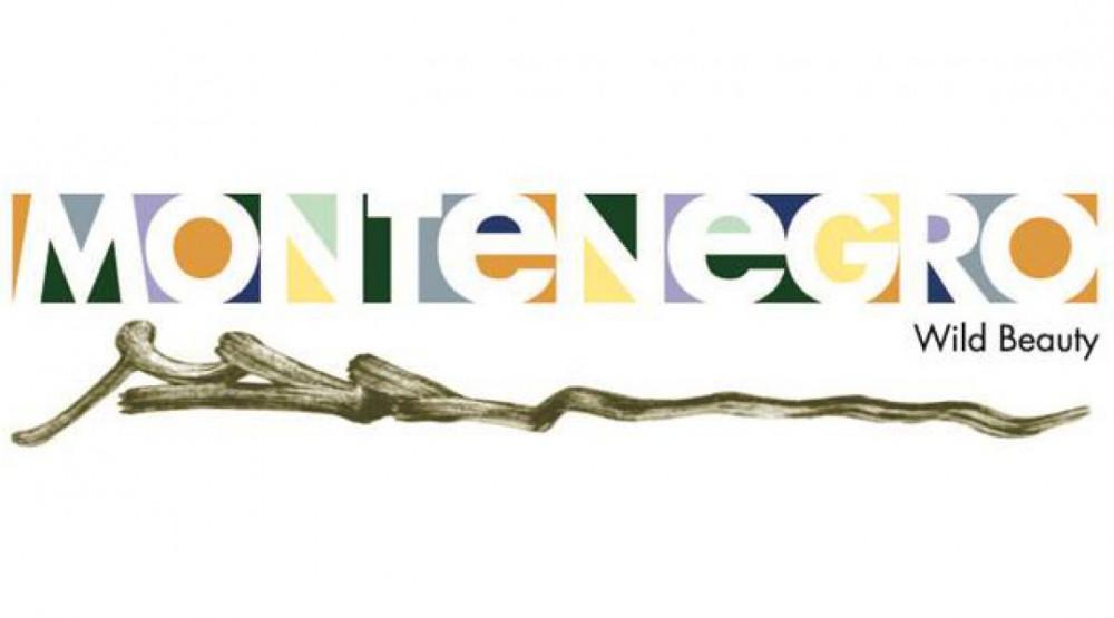 "NTOCG učestvovala na radionici ""New Deal Europe"""