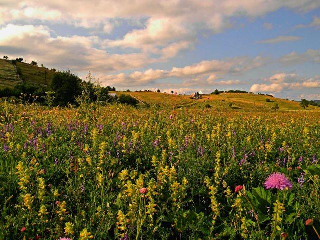 Park prirode Piva: Staza Zdravlja uskoro u Plužinama