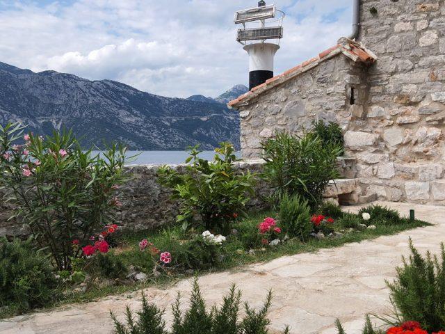 Doprinos ljepšem Tivtu: Turistički cvijet 2021.