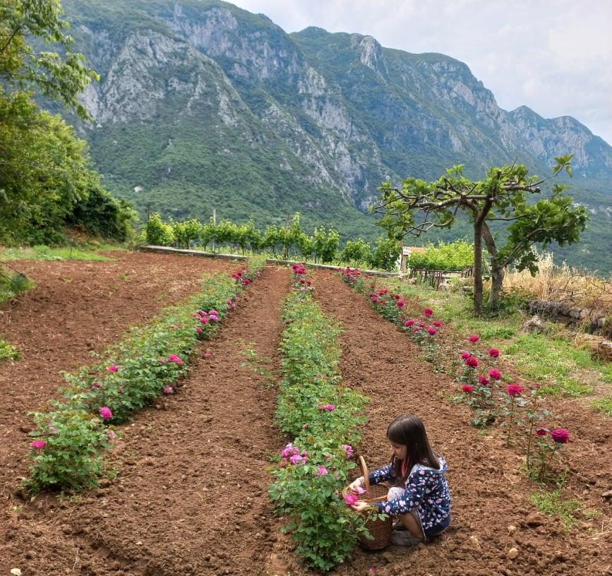 Odmor na selu: Otkrivamo raj između jezera i mora