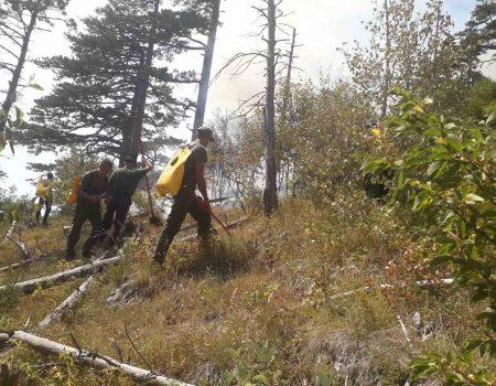 Upozorenje NP Durmitor: Opasno splavariti rijekom Tarom zbog požara