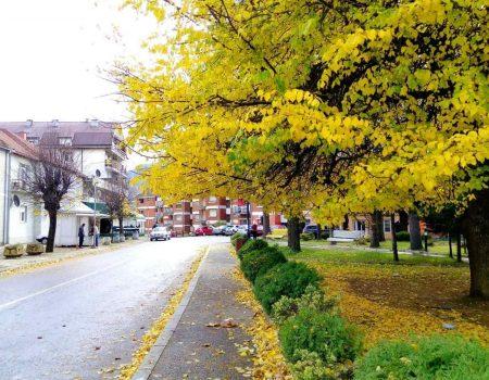 Mojkovačka filmska jesen od 11. do 16. oktobra